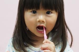 歯周病予防の基本はプラークコントロール